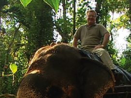 Herbie rides an elephant in Kumily, South India