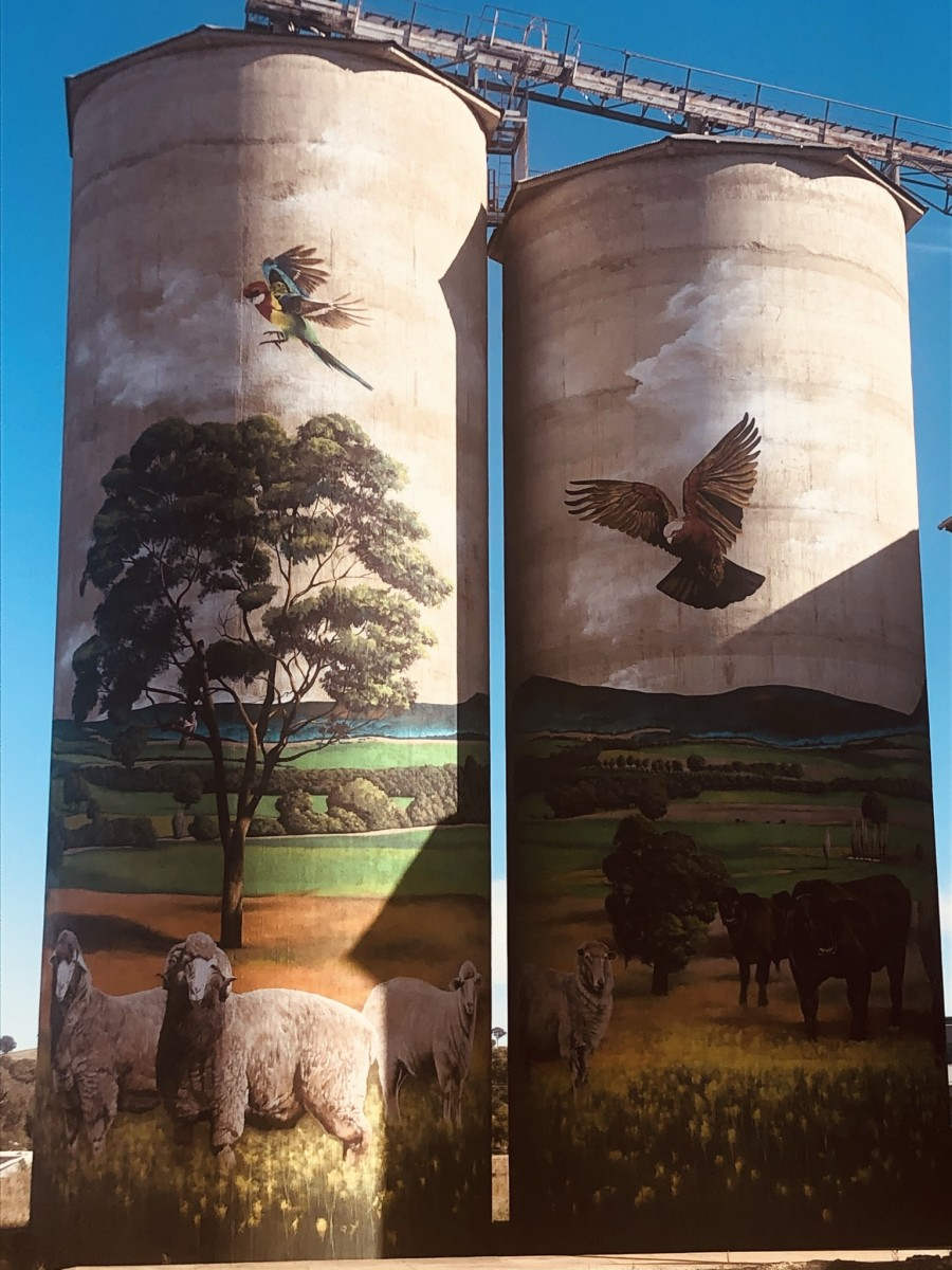 Silos at Grenfell NSW